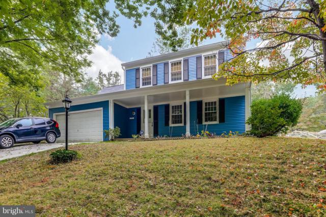 10664 Greenbough Court, COLUMBIA, MD 21044 (#1009926146) :: The Maryland Group of Long & Foster