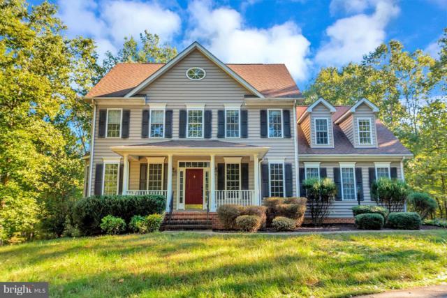 8613 Laroque Run Drive, FREDERICKSBURG, VA 22407 (#1009926276) :: Colgan Real Estate