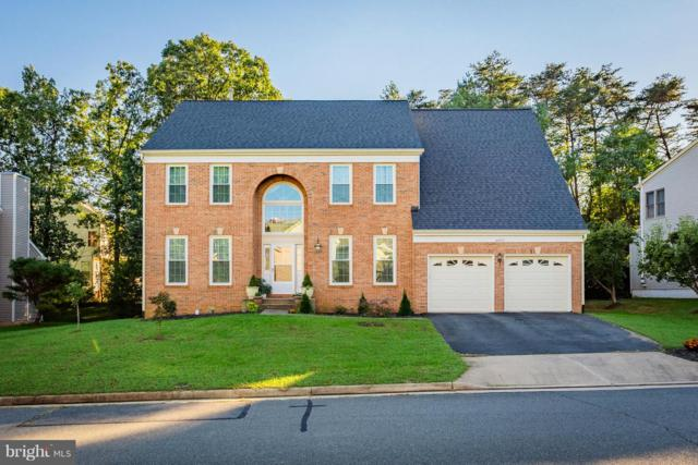 46913 Antler Court, STERLING, VA 20164 (#1009926652) :: Arlington Realty, Inc.