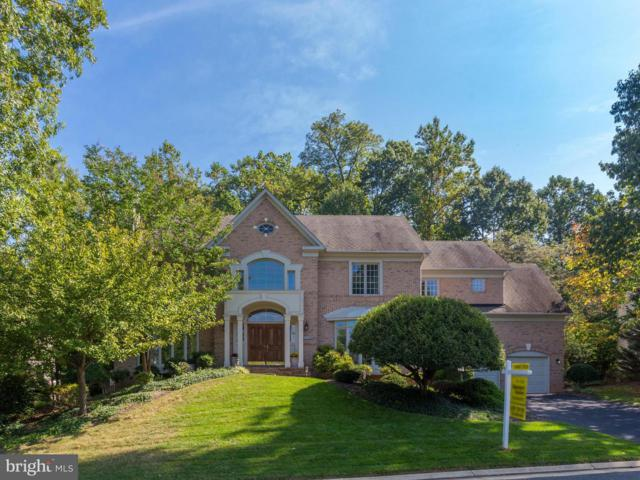 12029 Creekbend Drive, RESTON, VA 20194 (#1009926736) :: Great Falls Great Homes