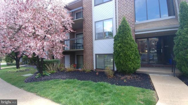 3 Mullingar Court #101, LUTHERVILLE TIMONIUM, MD 21093 (#1009934684) :: Circadian Realty Group
