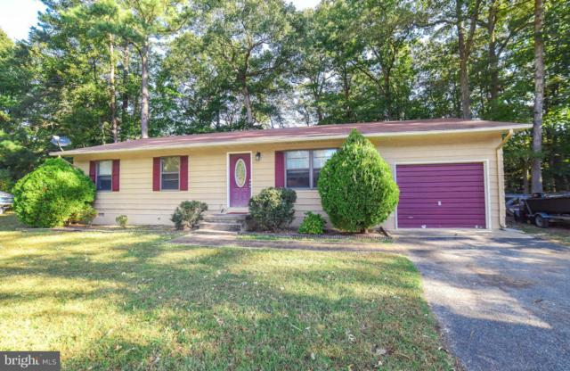 21620 America Street, LEXINGTON PARK, MD 20653 (#1009935748) :: The Sebeck Team of RE/MAX Preferred