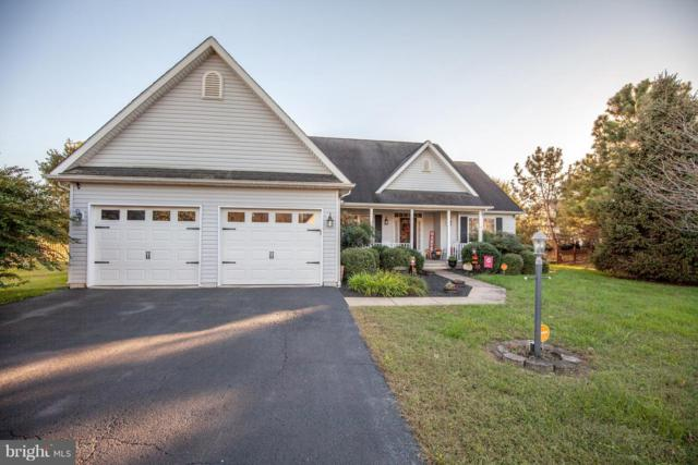 41 Clemson Lane, FALLING WATERS, WV 25419 (#1009940518) :: Pearson Smith Realty