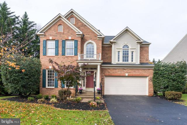 20437 Brightwater Place, STERLING, VA 20165 (#1009957806) :: The Gus Anthony Team