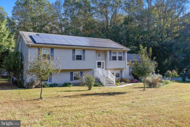 25610 Beauchamp Branch Road, DENTON, MD 21629 (#1009963080) :: Coldwell Banker Chesapeake Real Estate Company