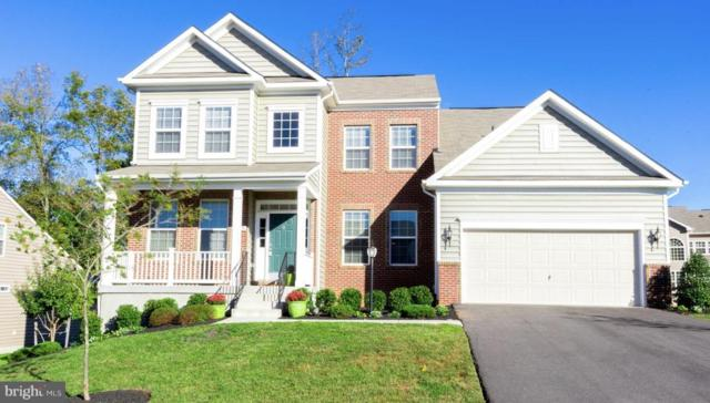 24074 Mill Wheel Place, ALDIE, VA 20105 (#1009970744) :: Pearson Smith Realty