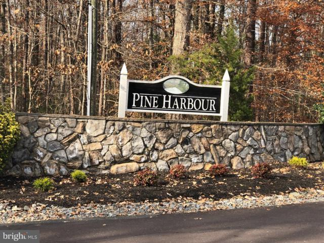 Pine Harbor Dr, MINERAL, VA 23117 (#1009971384) :: ExecuHome Realty