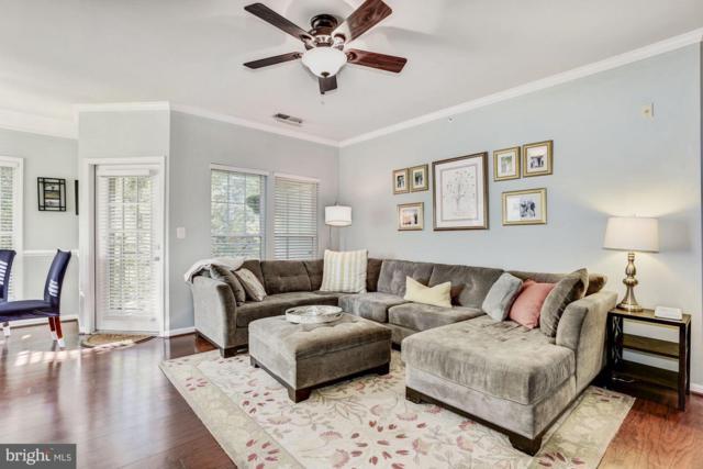 1501 North Point Drive #301, RESTON, VA 20194 (#1009993318) :: Cristina Dougherty & Associates