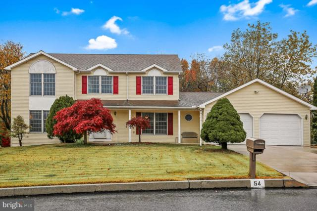 54 Summer Drive, DILLSBURG, PA 17019 (#1010003948) :: Benchmark Real Estate Team of KW Keystone Realty