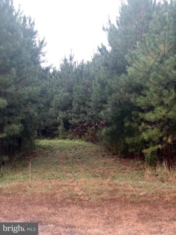 13251 Brooke Ridge Lane, SPOTSYLVANIA, VA 22551 (#1010005304) :: Circadian Realty Group