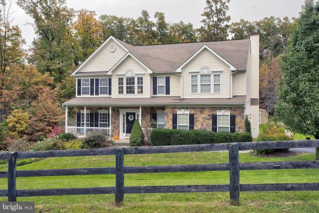 123 Ewell Drive, WINCHESTER, VA 22602 (#1010015788) :: Remax Preferred | Scott Kompa Group