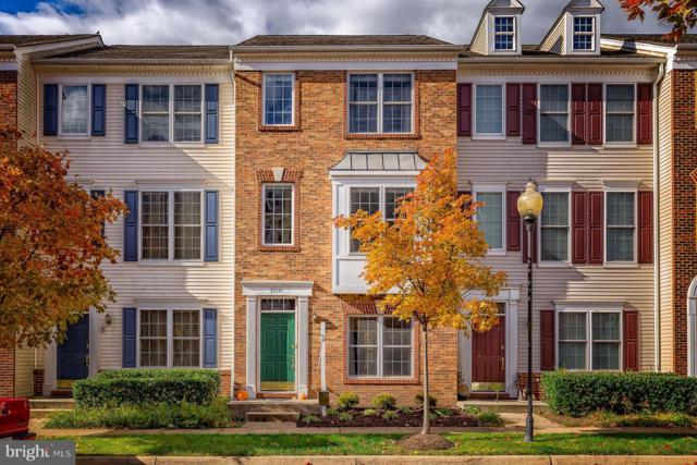 25141 Shultz Terrace, CHANTILLY, VA 20152 (#VALO100106) :: Colgan Real Estate
