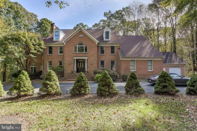 3813 Timber View Way, REISTERSTOWN, MD 21136 (#MDBC100480) :: The Maryland Group of Long & Foster