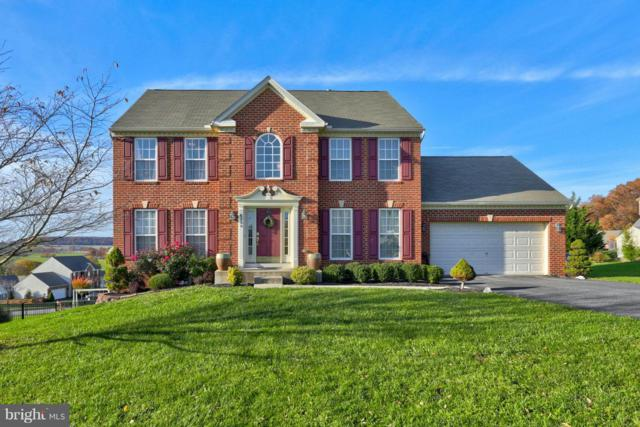6330 Lauren Lane, SPRING GROVE, PA 17362 (#PAYK100284) :: Colgan Real Estate