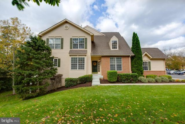 43573 Dunhill Cup Square, ASHBURN, VA 20147 (#VALO100596) :: ExecuHome Realty