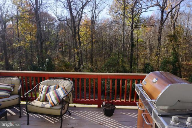 13663 Wildflower Lane, CLIFTON, VA 20124 (#VAFX102250) :: Great Falls Great Homes
