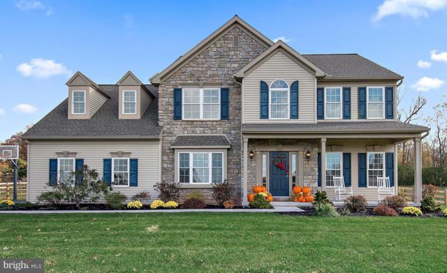 114 Royal Horse Way, REINHOLDS, PA 17569 (#PALA101700) :: Benchmark Real Estate Team of KW Keystone Realty