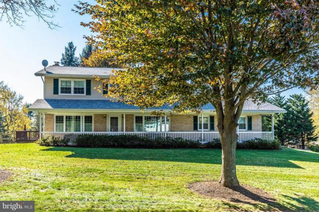 7315 Beechtree Drive, MIDDLETOWN, MD 21769 (#MDFR100670) :: Ultimate Selling Team