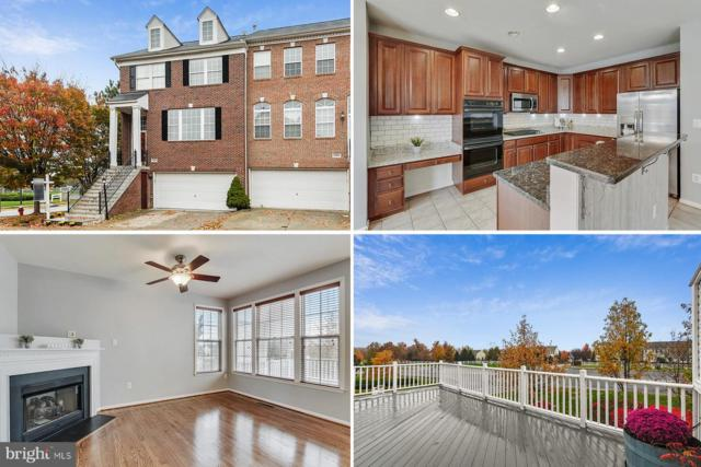 43054 Shadow Terrace, LEESBURG, VA 20176 (#VALO101316) :: Growing Home Real Estate