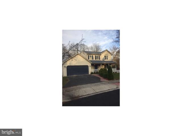 6081 Long Pond Drive, BIRDSBORO, PA 19508 (#PABK102444) :: Ramus Realty Group