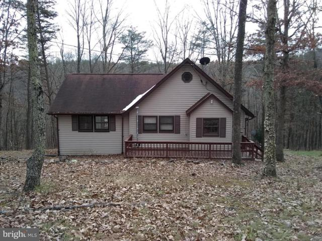 1029 Wild Dog Pass, DELRAY, WV 26714 (#WVHS100872) :: SURE Sales Group