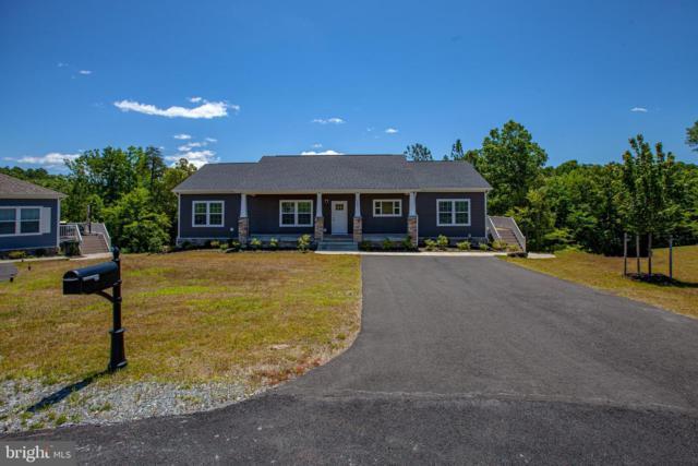145 Hickory Hill Overlook Court, FREDERICKSBURG, VA 22405 (#VAST110154) :: Tessier Real Estate