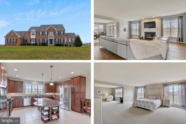 37185 Franklins Ford Place, PURCELLVILLE, VA 20132 (#VALO167232) :: LoCoMusings