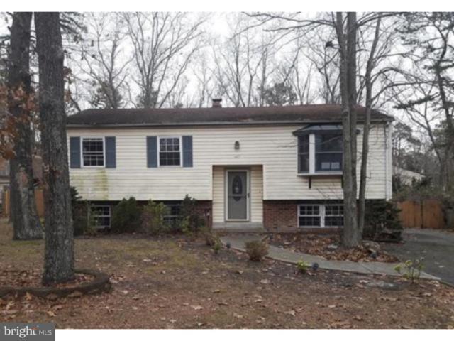 417 N Carolina Trail, BROWNS MILLS, NJ 08015 (#NJBL194500) :: Bob Lucido Team of Keller Williams Integrity