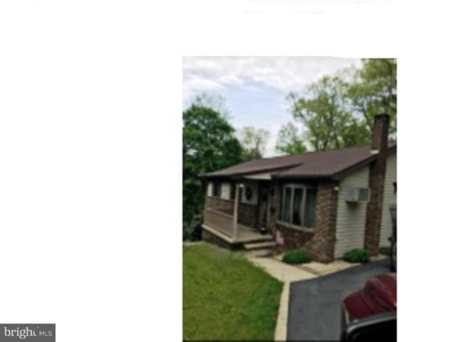 824 Nepolt Street, POTTSVILLE, PA 17901 (#PASK114178) :: Younger Realty Group