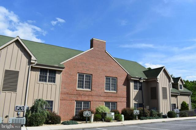 14200 Northern Lights Drive #32, MERCERSBURG, PA 17236 (#PAFL122464) :: The Joy Daniels Real Estate Group