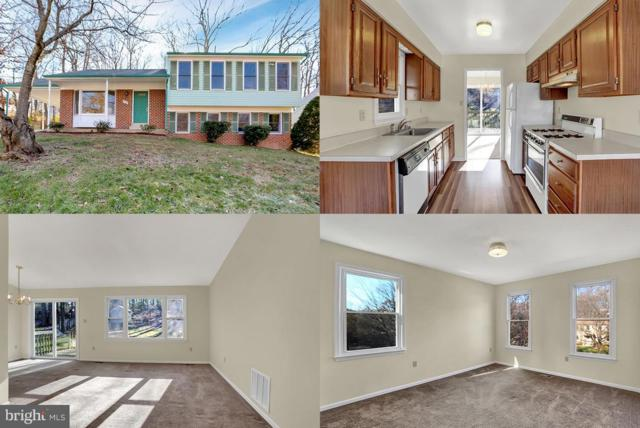 11103 Cedar Lane, BELTSVILLE, MD 20705 (#MDPG272510) :: The Miller Team
