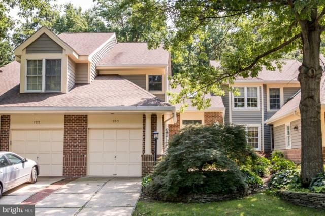 120 Spring Place Way, ANNAPOLIS, MD 21401 (#MDAA235888) :: Pearson Smith Realty