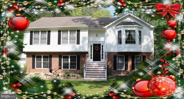 3309 Hunter Trl Drive, AMISSVILLE, VA 20106 (#VACU114852) :: The Riffle Group of Keller Williams Select Realtors