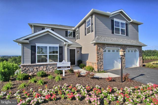 1119 Park Avenue, DILLSBURG, PA 17019 (#PAYK104260) :: Benchmark Real Estate Team of KW Keystone Realty