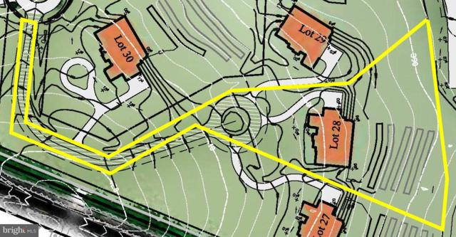 15732 SENECA RUN Court, DARNESTOWN, MD 20874 (#MDMC485624) :: Dart Homes