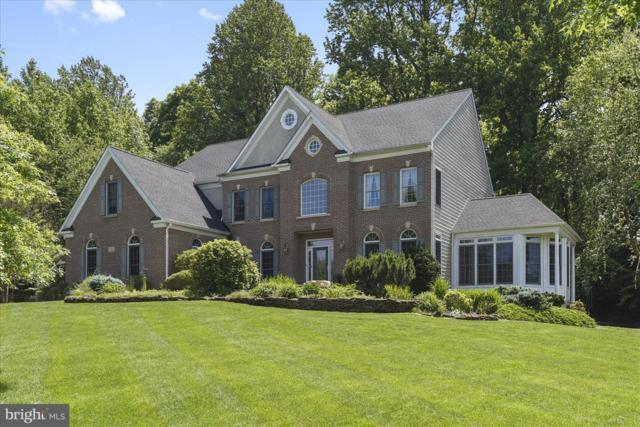 1320 Sienna Trail, DAVIDSONVILLE, MD 21035 (#MDAA302066) :: The Gus Anthony Team