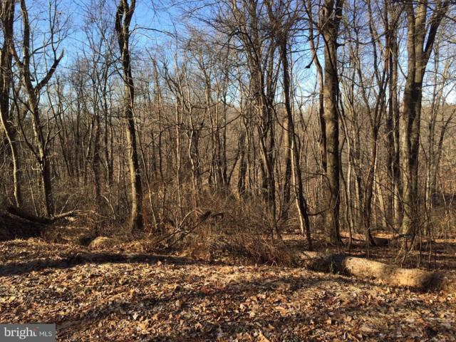 Lot 11 Fox Creek Court, HELLAM TWP, PA 17406 (#PAYK105394) :: The Heather Neidlinger Team With Berkshire Hathaway HomeServices Homesale Realty