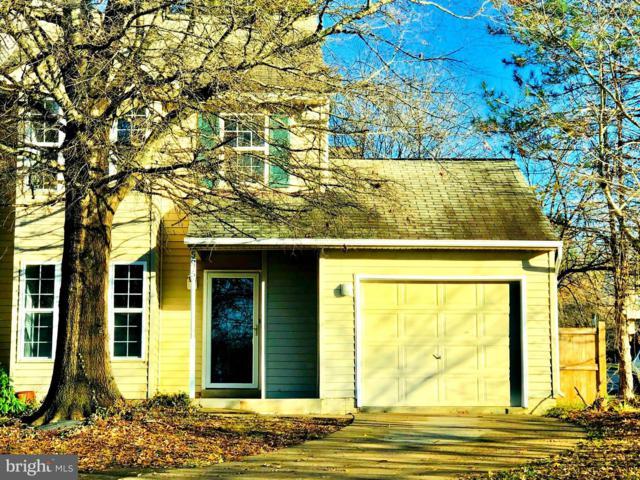 5675 Gosling Drive, CLIFTON, VA 20124 (#VAFX745316) :: Tom & Cindy and Associates