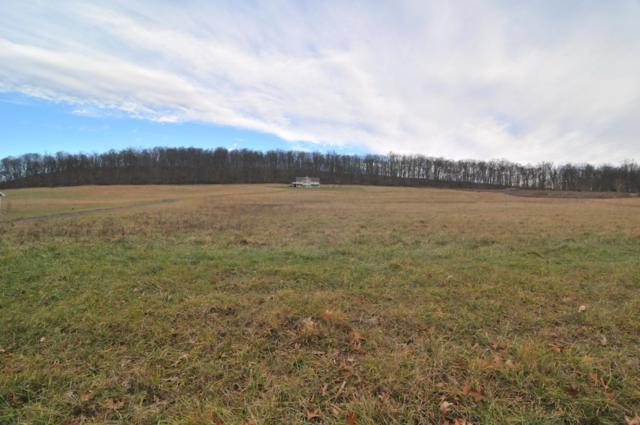 013 Hidden Valley Road, LOYSVILLE, PA 17047 (#PAPY100236) :: Lucido Agency of Keller Williams