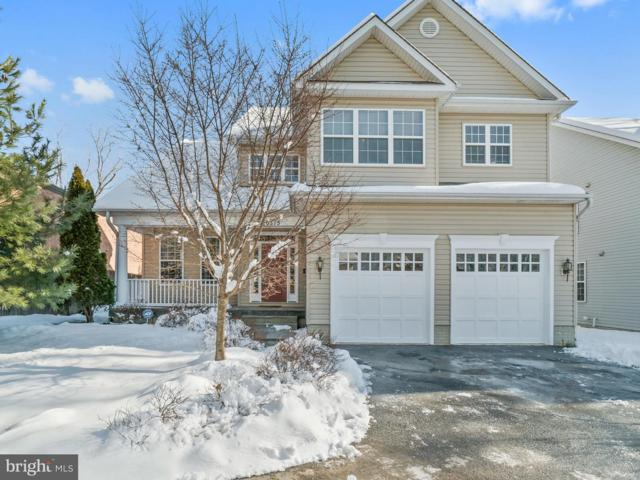 10315 Gilmoure Drive, SILVER SPRING, MD 20901 (#MDMC487418) :: The Speicher Group of Long & Foster Real Estate