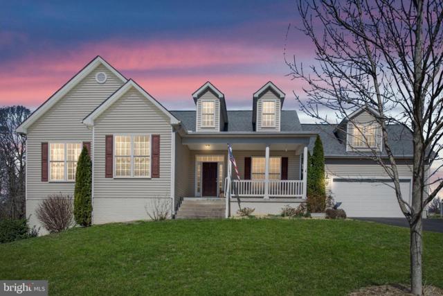 15603 Cedar Tree Court, MINERAL, VA 23117 (#VASP165266) :: Colgan Real Estate