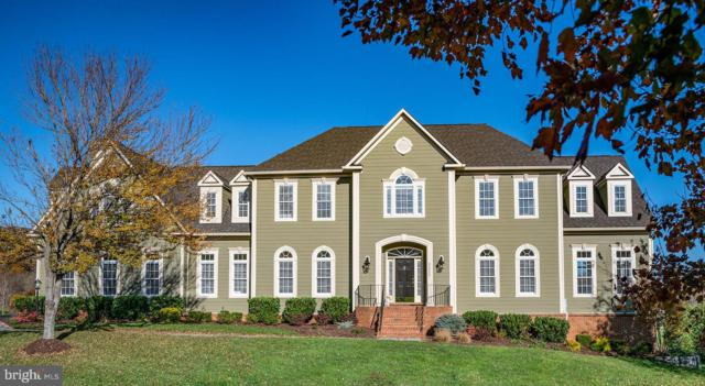 41612 Swiftwater Drive, LEESBURG, VA 20176 (#VALO267932) :: Wes Peters Group Of Keller Williams Realty Centre