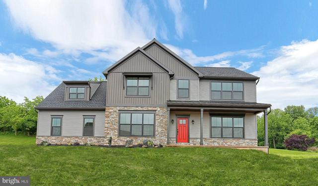 165 East Valley Road, DENVER, PA 17517 (#PALA114886) :: The Joy Daniels Real Estate Group