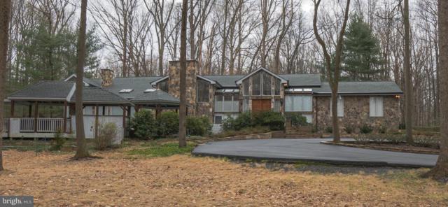 9651 Fringe Tree Road, GREAT FALLS, VA 22066 (#VAFX746572) :: The Putnam Group