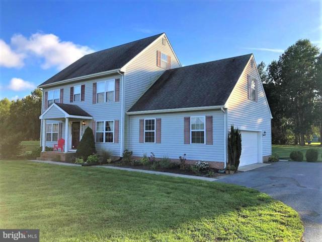 7676 Egret Lane, HEBRON, MD 21830 (#MDWC101140) :: Colgan Real Estate