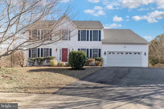 140 Bush Hill Court, FREDERICKSBURG, VA 22405 (#VAST165898) :: RE/MAX Cornerstone Realty