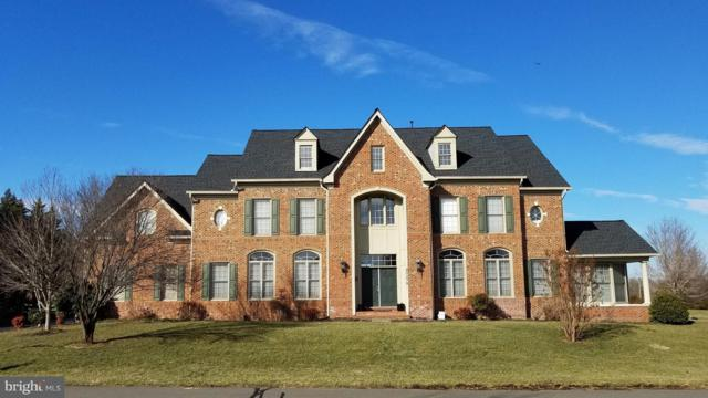 40278 Warren Glen Lane, LEESBURG, VA 20175 (#VALO268154) :: Crews Real Estate