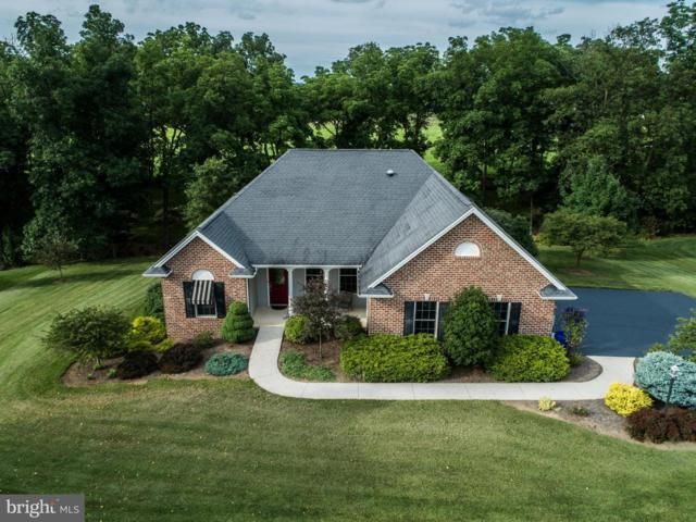 223 Sandoeshire Lane, CHAMBERSBURG, PA 17201 (#PAFL141328) :: The Heather Neidlinger Team With Berkshire Hathaway HomeServices Homesale Realty