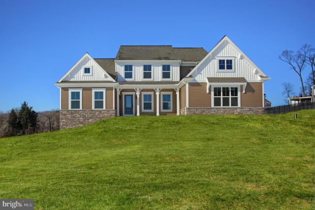 42 Chateau Circle, WRIGHTSVILLE, PA 17368 (#PAYK106084) :: The Joy Daniels Real Estate Group