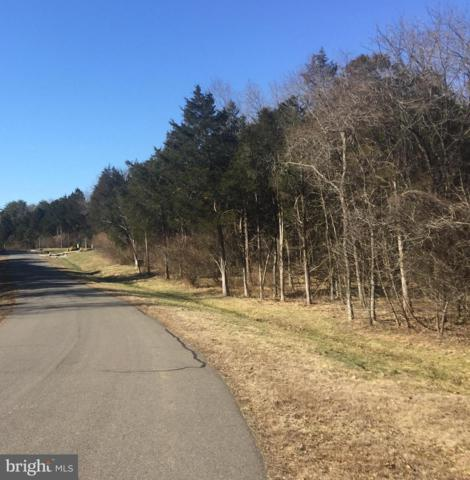 16452 Glory Creek Trail, CENTREVILLE, VA 20120 (#VAFX747702) :: ExecuHome Realty
